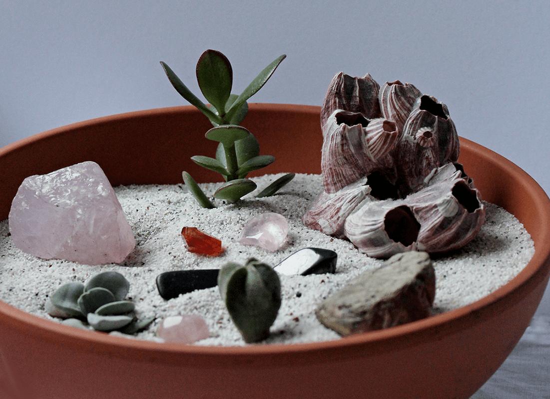 Dekoration mit Pflanzen: Sukkulentenschale