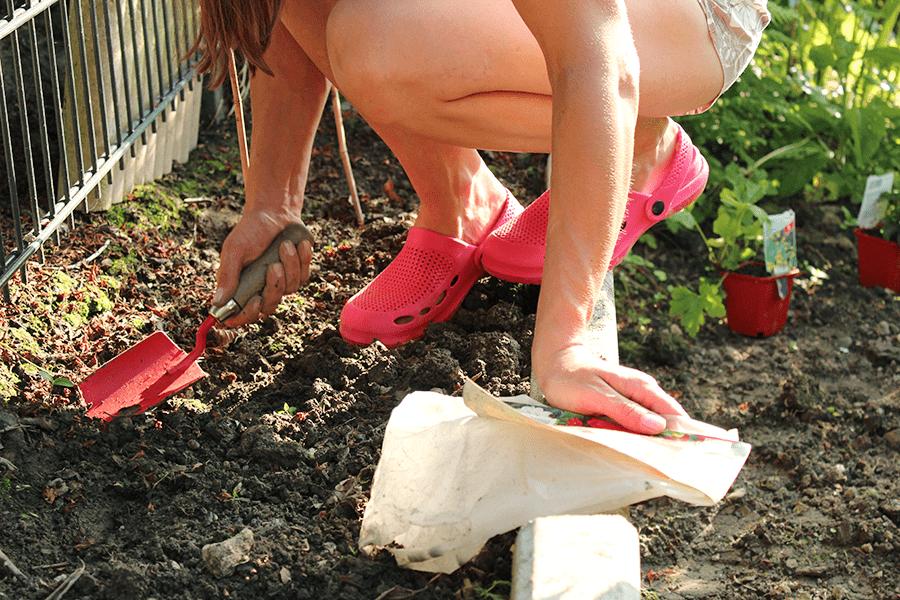 Fallstudie #1: Garten-Makeover mit Mikro-Budget